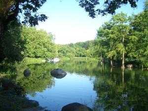 See im Münchner Westpark