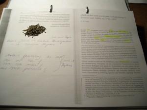 Ein bisschen Tee auf Text, den ich zur Globalisierung gelesen habe