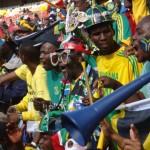Vuvuzela ist kein afrikanische Heilwurzel, sondern die Tröte auf der Fußball WM 2010